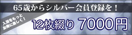 シルバー会員登録を!12枚綴り6500円