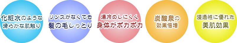 蒲生野の湯 ナノ 5大特長